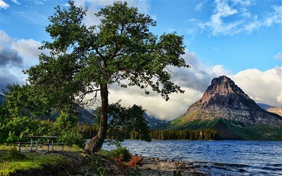 Papéis de Parede Árvore, lago, montanhas, natureza paisagem