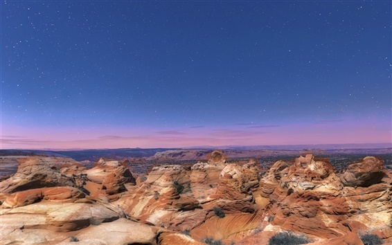 Fond d'écran États-Unis, Arizona, Parc National, les rochers, la nuit, les étoiles, le ciel bleu
