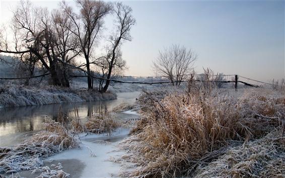 Papéis de Parede Inverno, geada, alvorecer, rio, árvores