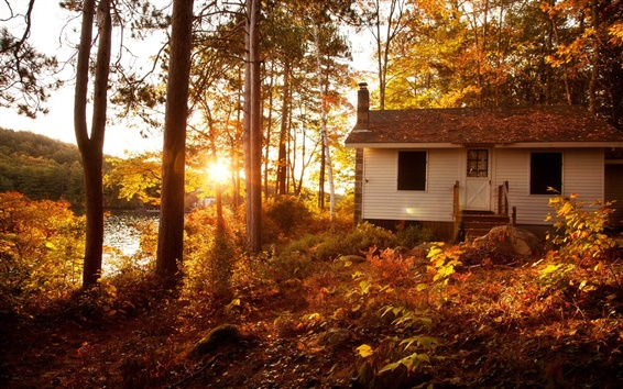 Wallpaper Autumn landscape, forest, trees, sunset, house