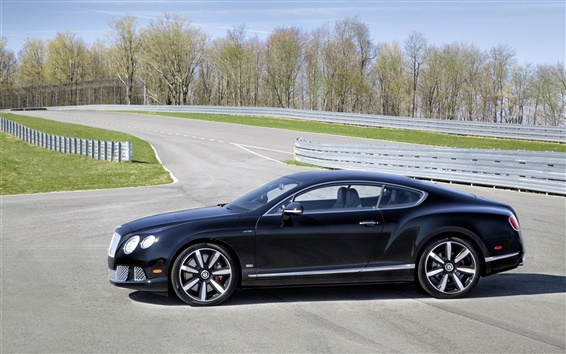 Wallpaper Bentley Continental GT Le Mans Edition car side view