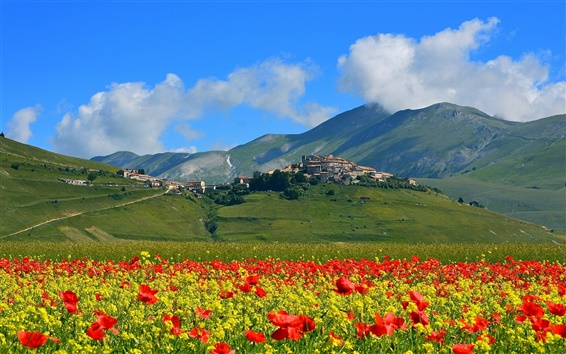 Wallpaper Castelluccio, Italy, mountains, poppies flowers, village