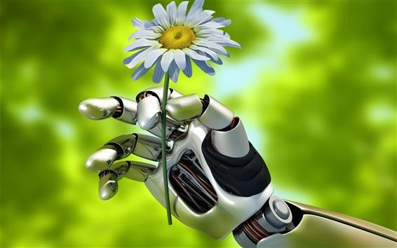 Fondos de pantalla Robot creativo, sostiene la flor de manzanilla