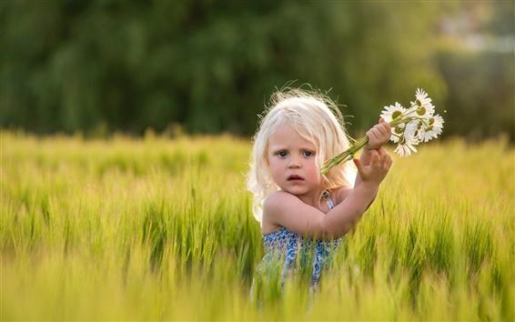 Fond d'écran Cute girl dans un champ de blé, marguerites, fleurs
