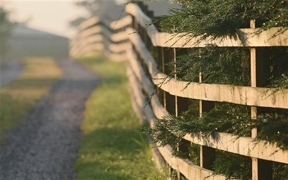 Wallpaper Fence, grass, road, morning