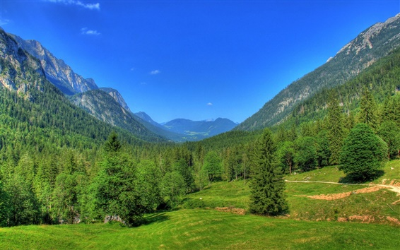 Wallpaper Germany, Bavaria, nature landscape, mountains, forest, trees, blue sky