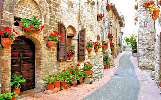 Wallpaper Italy, street, house, flowers, road