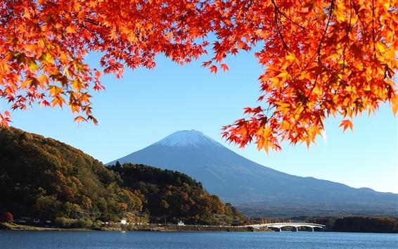 Обои Япония, гора Фудзи, осень, красные листья