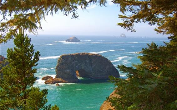 Fond d'écran Côte du Pacifique, les vagues de la mer, les rochers, les arbres, l'Oregon, Etats-Unis