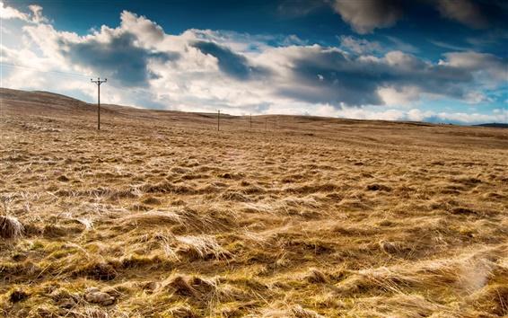 Wallpaper Sky, clouds, field, grass