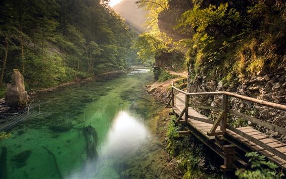 Wallpaper Slovenia, trails, rivers, mountains