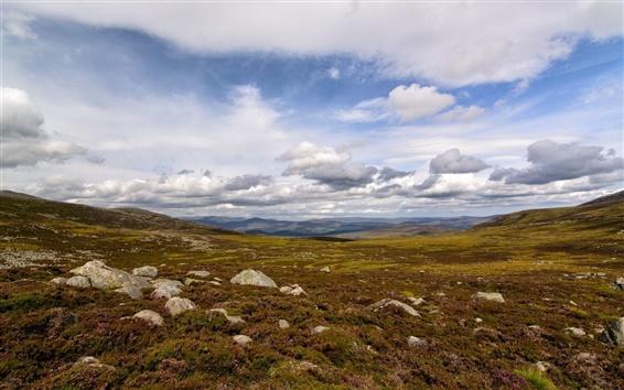 Wallpaper Steppe, grass, stones, clouds
