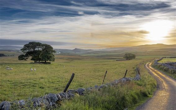 Fond d'écran Lever du soleil, le matin, route, champs, clôture, arbres