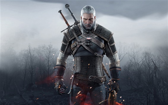 Wallpaper The Witcher 3: Wild Hunt, white hair man