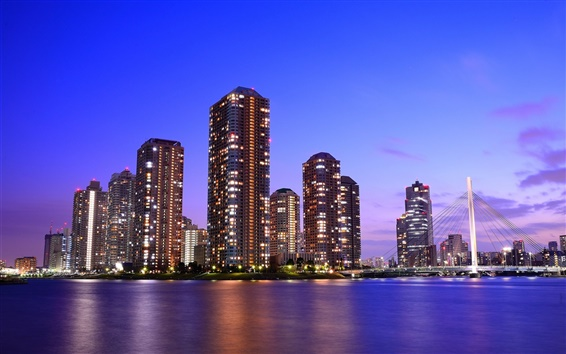 Обои Токио, Япония, небоскребы, красивая ночь, мост, огни, море