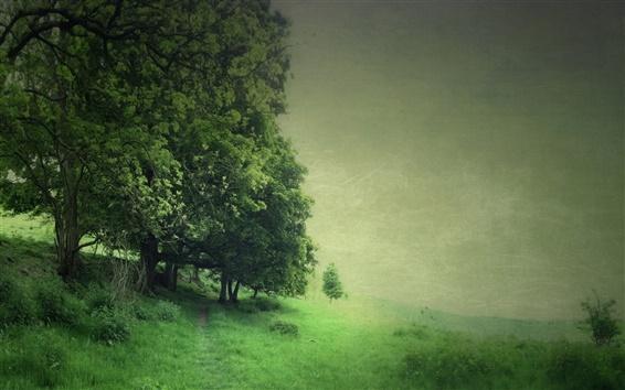 Fond d'écran Arbres, champ, vert style