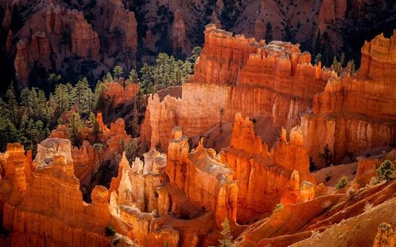Wallpaper USA, Utah, National Park, Bryce Canyon, rocks, morning
