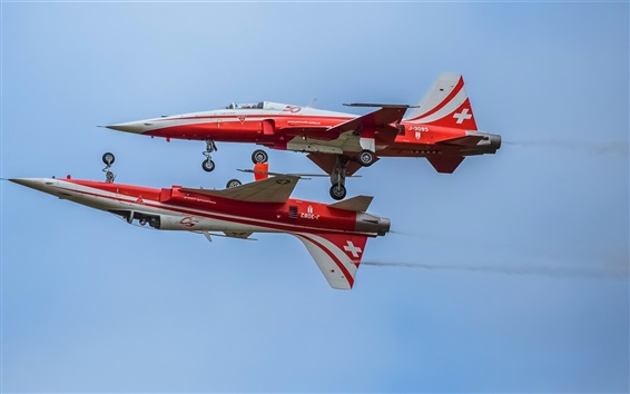 Wallpaper Aerobatic, two planes, parade, Switzerland