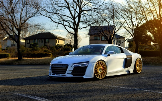 Wallpaper Audi R8 white car side view, trees