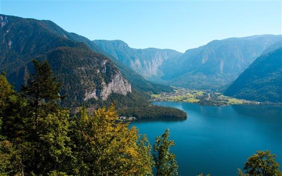 Fond d'écran Autriche, forêt, arbres, lac, les montagnes