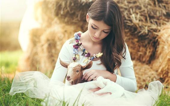 Papéis de Parede Menina bonito, sardas, ovelhas