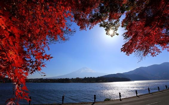 Wallpaper Japan, Mount Fuji, road, river, twigs, red leaves, sun