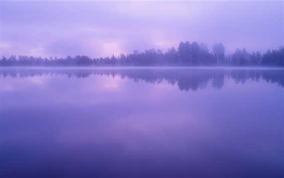 Wallpaper Lake, water, forest, trees, dusk, fog