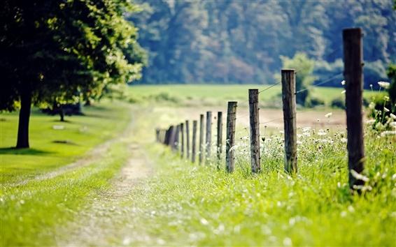 Papéis de Parede Natureza, cerca, prado, grama, árvores