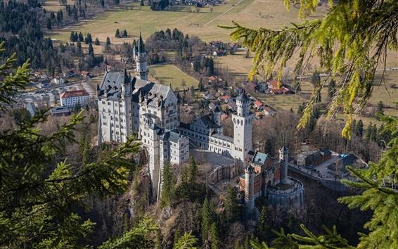 Papéis de Parede Neuschwanstein, castelo, árvores, Baviera, Alemanha