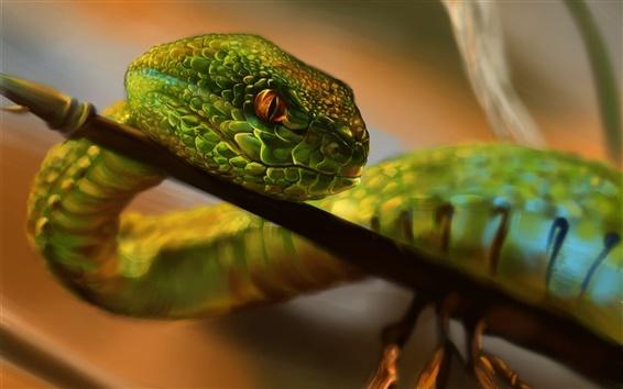 Papéis de Parede Pintura, cobra verde, olhos