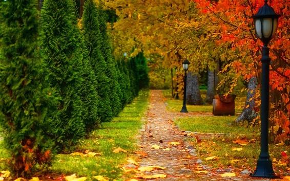 Fond d'écran Parc, automne, route, arbres, feuilles, lanterne