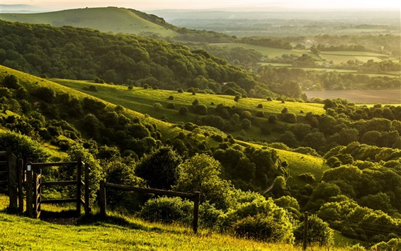 Wallpaper Pyecombe, West Sussex, England, farm, hills, green, trees