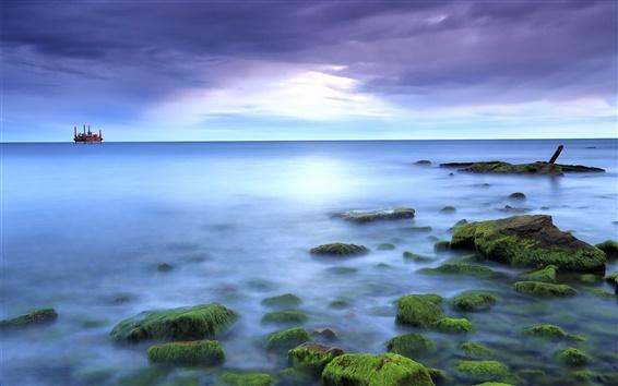 Fond d'écran Mer, les rochers, la mousse, bleu, soleil, nuages