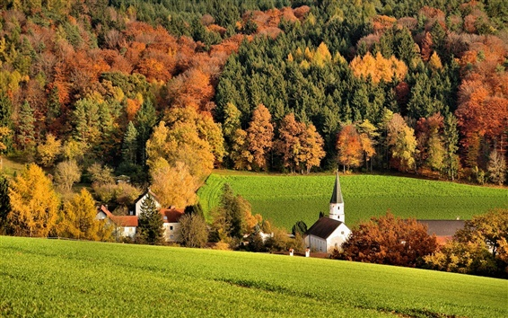 Wallpaper Slope, forest, trees, field, houses, church, autumn