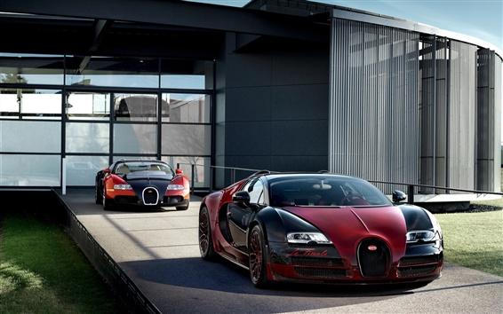 Обои Два Bugatti Veyron Grand Sport Vitesse суперкаров