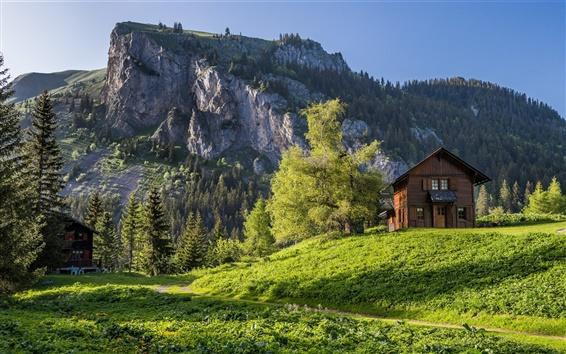 Обои Вале, Швейцария, Альпы, горы, деревья, трава, дом