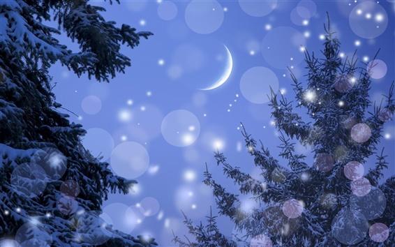 Fond d'écran Hiver, la lune, la nuit, les arbres, la neige, l'éblouissement