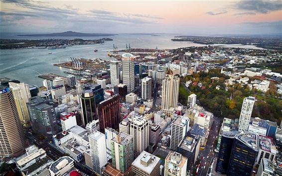 Wallpaper Auckland, New Zealand, city, street, buildings, coast