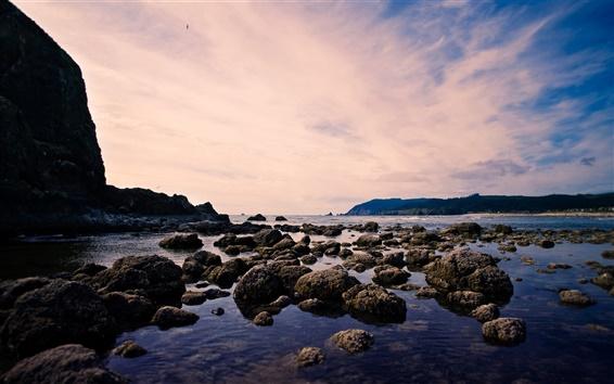 Fond d'écran Plage, mer, roche, oiseaux, ciel, crépuscule