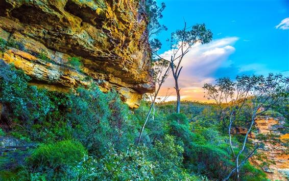 Обои Голубые горы Национальный парк, Австралия, скалы, деревья, небо, облака, закат