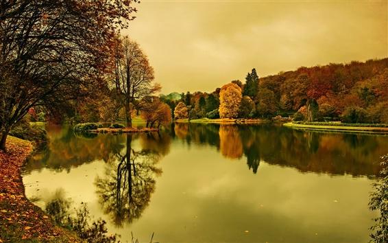 Wallpaper Lake, dusk, autumn, trees