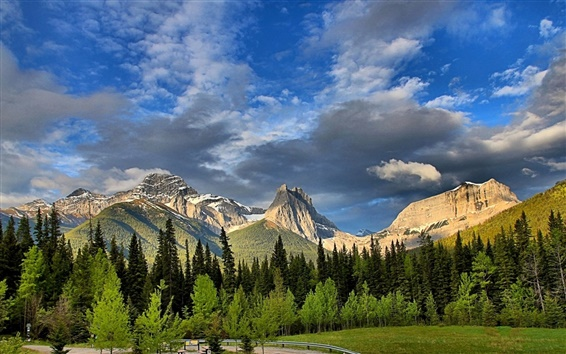 Papéis de Parede Mount Lougheed, Alberta, Canadá, Montanhas Rochosas canadenses, floresta, árvores
