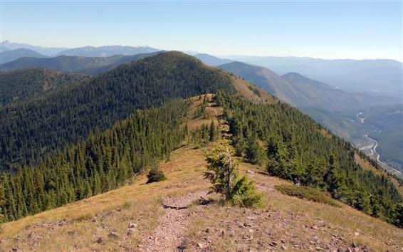 Обои Горы, лес, деревья, природа пейзаж