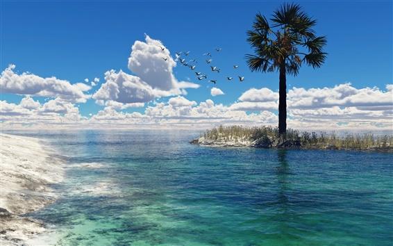 Fond d'écran Mer, palmiers, oiseaux, mouettes, nuages