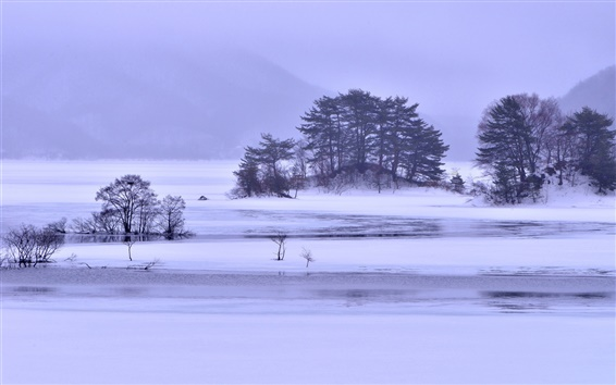 Wallpaper Winter snow, lake, islands, trees, ice, fog