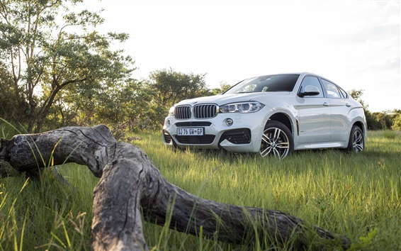 Wallpaper 2015 BMW X6 xDrive F16 white car, grass