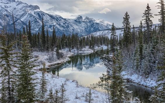 Fond d'écran Rocheuses canadiennes, le parc national Jasper, en Alberta, au Canada, l'hiver, la rivière
