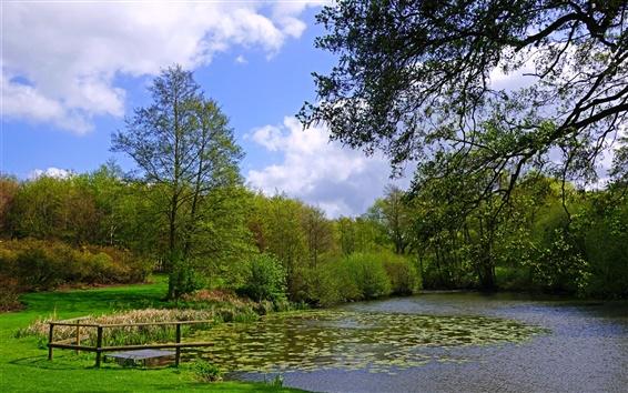 Wallpaper England, Leeds Castle, garden, pond, grass, bushes, trees