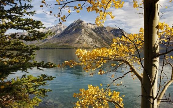 Wallpaper Mountains, lake, trees, leaves, autumn
