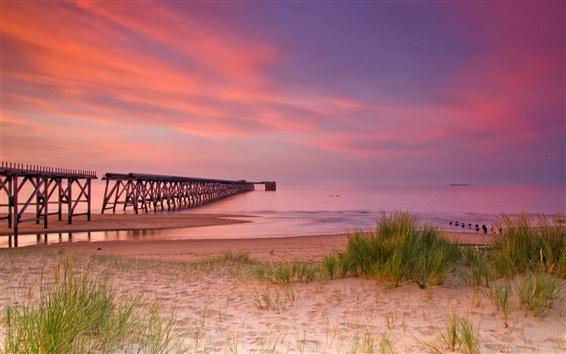Wallpaper Nature, bridge, pier, sand, grass, sea, wave, horizon, pink sky